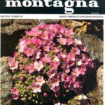 """""""L'olivo nell'Appennino settentrionale, con particolare riferimento alla Romagna"""", Natura e Montagna n. 3\4 - Dicembre 1992 pagg. 29-33. In collaborazione con G.Monti"""